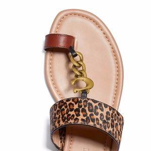COACH Women's Jaimee Toe Loop Chain Flat Sandal